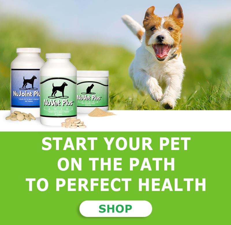 NuVet Labs - NuVet Plus, NuJoint DS Pet Vitamin Supplements