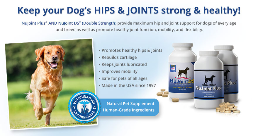 nujoint plus and nujoint ds pet supplements